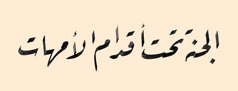 Reqa Script