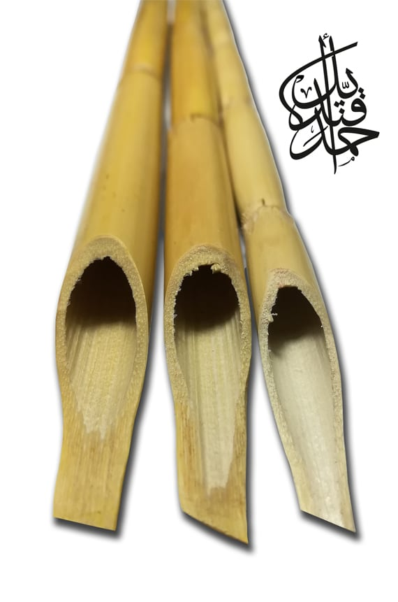 Store-Bamboo pen